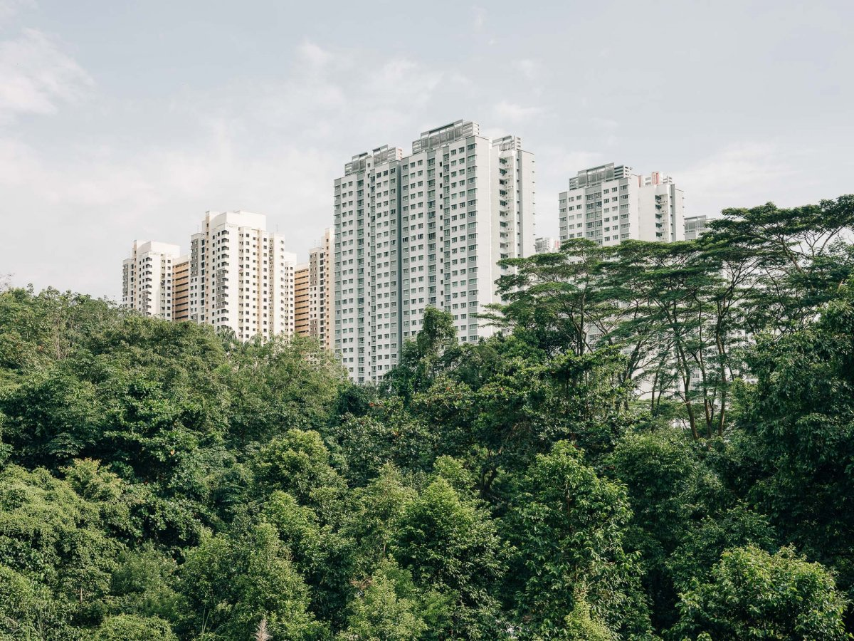 The City in The Forest - Jan Richard Heinicke
